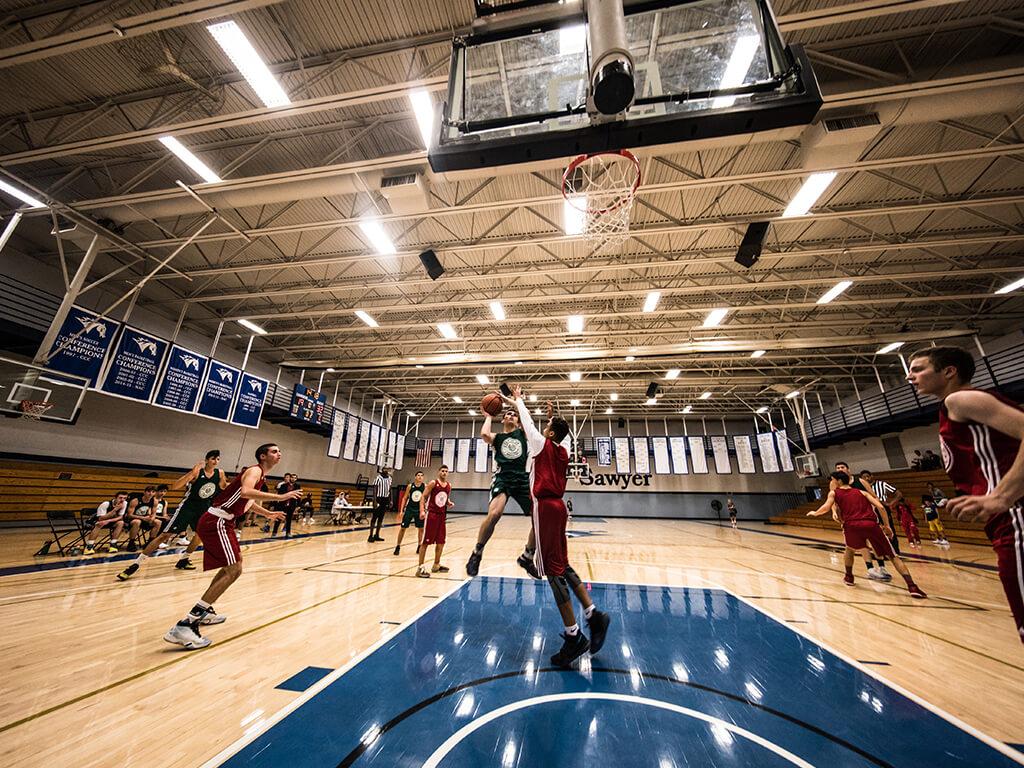 step it up מחנה כדורסל בארה׳׳ב